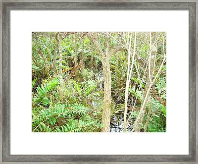 Surreal Forest Framed Print by Van Ness