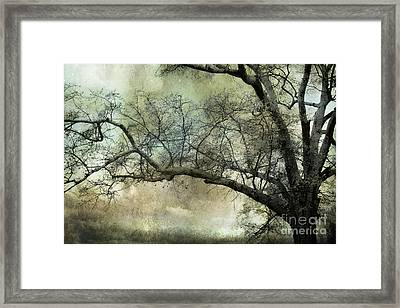 Surreal Gothic Dreamy Trees Nature Landscape Framed Print