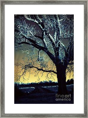 Surreal Gothic Fantasy Blue Tree Nature Sunset  Framed Print by Kathy Fornal