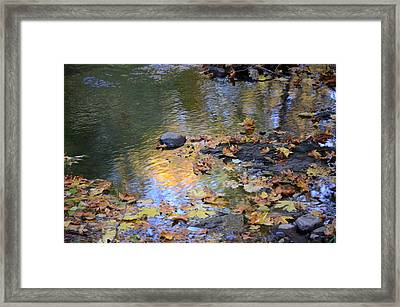 Surreal Framed Print by Jeri lyn Chevalier