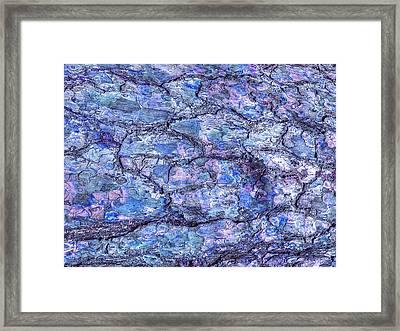 Surreal Patterned Bark In Blue 2 Framed Print by Gill Billington