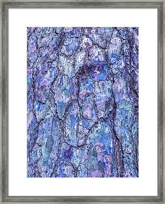 Surreal Patterned Bark In Blue Framed Print by Gill Billington