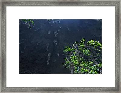Surreal Stalactites At The Camuy Caverns Framed Print by Sandra Pena de Ortiz