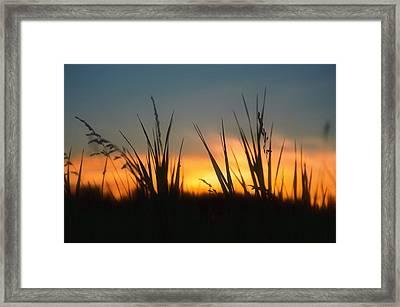 Surreal Sunset Framed Print by Nikki McInnes