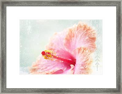 Surrender To Mystery Is The Highest Optimism  Framed Print by Sharon Mau