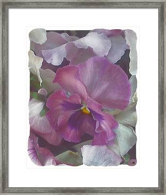 Surrounded By Softness Framed Print by Muriel Levison Goodwin