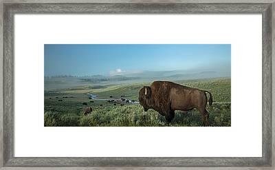 Surveying His Kingdom Framed Print by Sandy Sisti