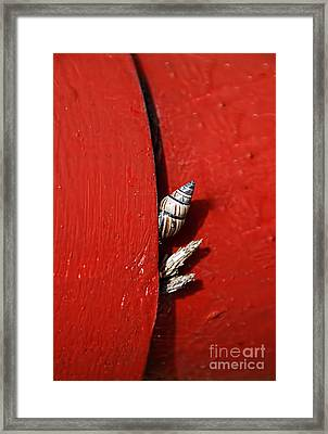 Survival Instinct  Framed Print