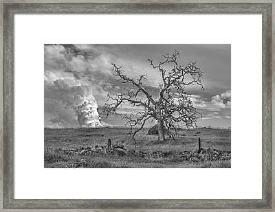 Survived Another Storm Framed Print by Richard Verkuyl