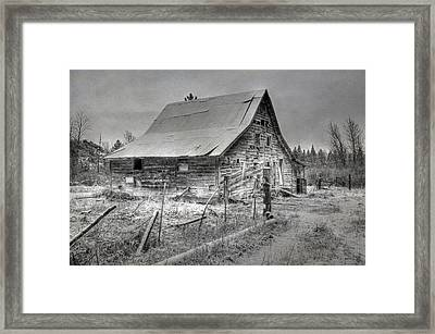Surviving The Elements Framed Print by Donna Kennedy