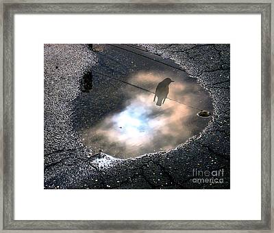 Surviving The Storm Framed Print