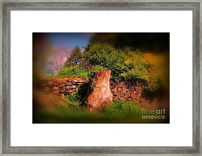 Survivor Framed Print by John Malone