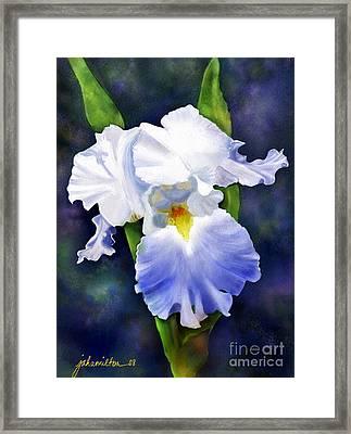 Susan's Blue Iris Framed Print