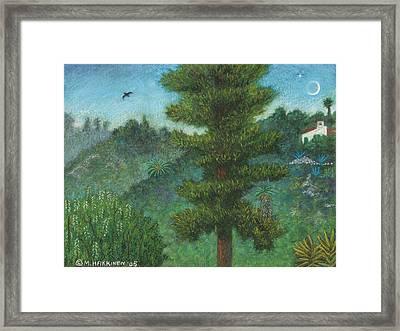 Susan's View Framed Print