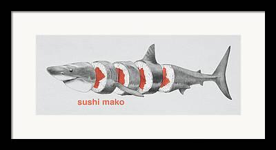 Nurse Shark Framed Prints