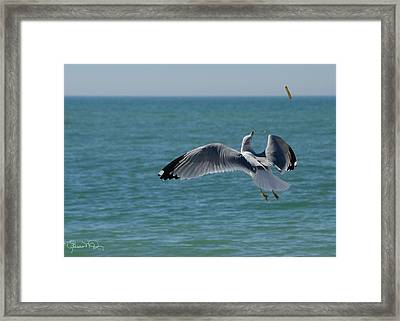 Would You Like Ketchup With That Framed Print by Susan Molnar