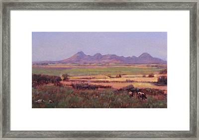 Sutter Buttes In Summer Afternoon Framed Print by Takayuki Harada