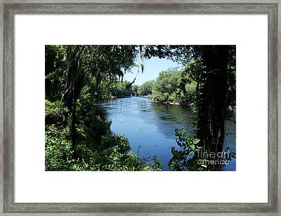 Suwanee River View Framed Print by Theresa Willingham