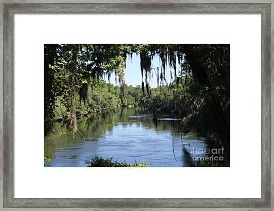 Suwanee River Vista Framed Print by Theresa Willingham