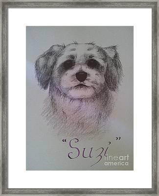 Suzi Framed Print by Debra Piro