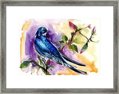 Swallow In Magnolia Watercolor Framed Print by Tiberiu Soos