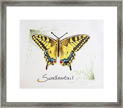 Swallowtail - Butterfly Framed Print by Katharina Filus