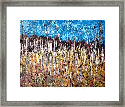 Swamp - Chamcook Nb Framed Print