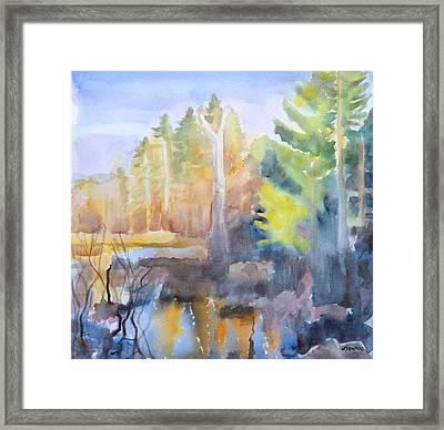 Swamp Color Framed Print