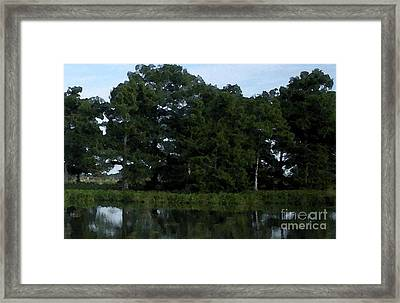 Swamp Cypress Trees Digital Oil Painting Framed Print