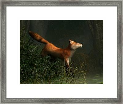 Swamp Fox Detail Framed Print by Daniel Eskridge