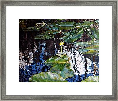 Swamp Lilly Framed Print