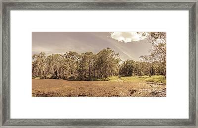 Swamp Marshland Framed Print by Jorgo Photography - Wall Art Gallery