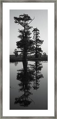 Framed Print featuring the photograph Swamp Mirror by Silke Brubaker