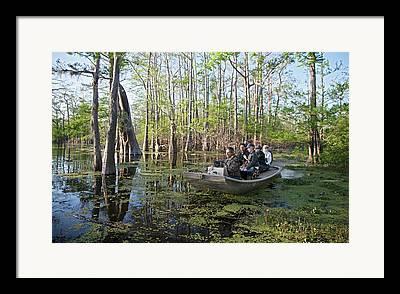 Swamp Tour Framed Prints