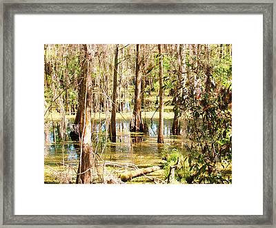 Swamp Wading 2 Framed Print by Van Ness