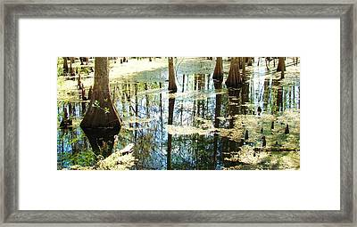 Swamp Wading 5 Framed Print by Van Ness