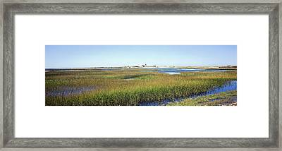 Swamp With Lighthouse Framed Print by Panoramic Images