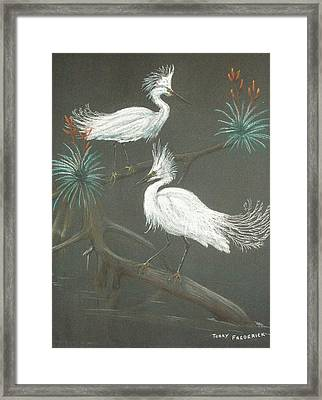 Swampbirds Framed Print