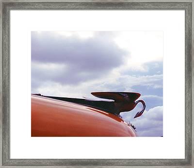 Swan Hood Ornament Framed Print