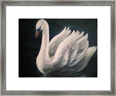 Swan II Framed Print