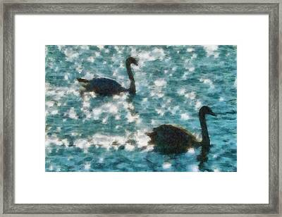 Swan Lake Framed Print by Ayse Deniz