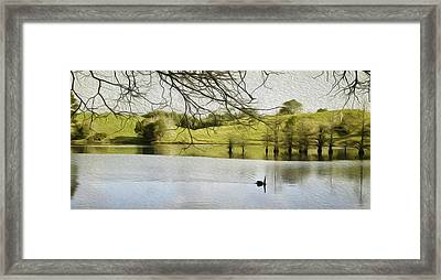 Swan Lake Framed Print by Les Cunliffe