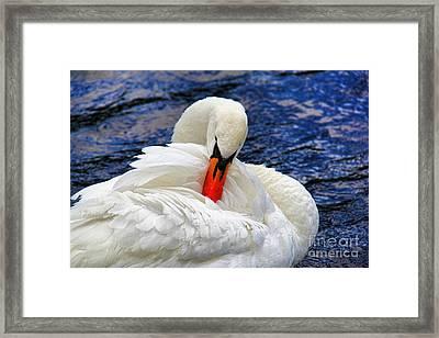 Swan Lake Framed Print by Mariola Bitner