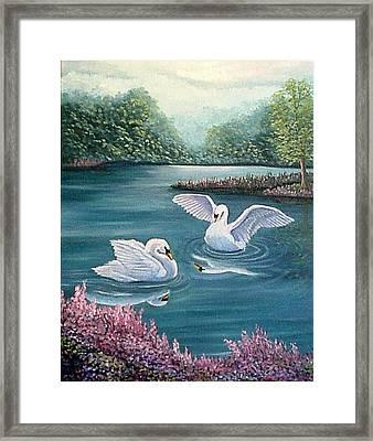 Swan Lake Serenity Framed Print