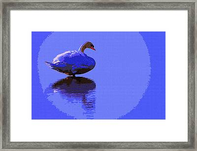 Swan Moon Framed Print