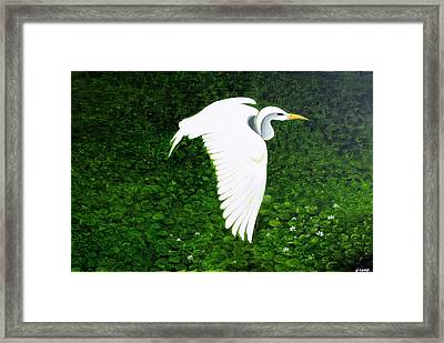 Swan-oil Painting Framed Print by Rejeena Niaz