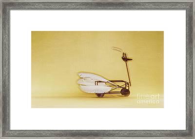 Swan On Wheels Framed Print