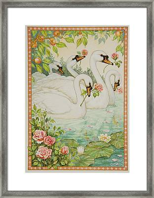 Swan Romance Framed Print by Lynn Bywaters
