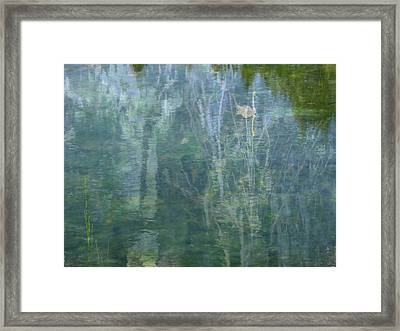 Swanee River Framed Print by Lyn  Perry