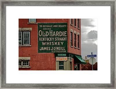 Swannie House 3391 Framed Print